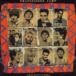 Transvision Vamp B With U cover