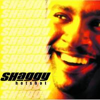 Shaggy find a song